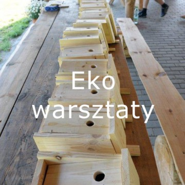 eko_warsztaty44
